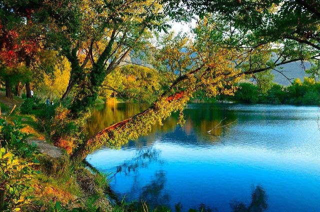 Lago Telese