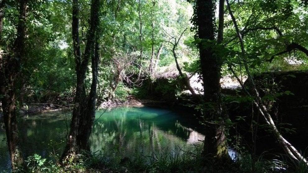 Cilento, apre il primo parco faunistico: l'oasi La Fiumara