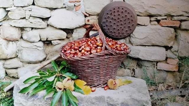 Festa del marrone