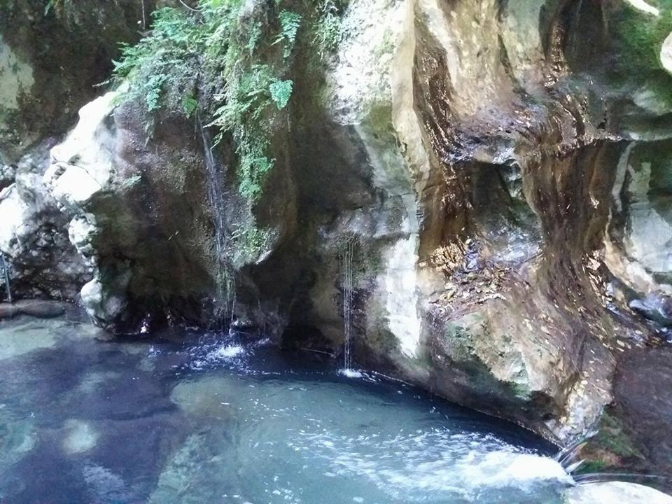 Oasi Grotte del Bussento