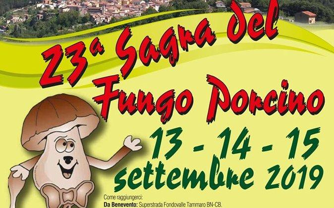 Sagra del fungo porcino Castelpagano