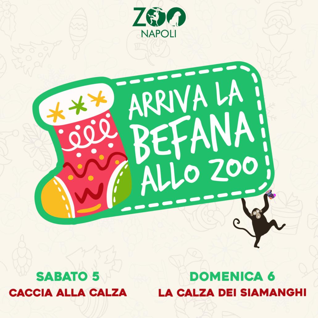 befana allo zoo