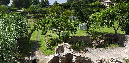 Terme e spa in Campania. Terme di Pozzuoli